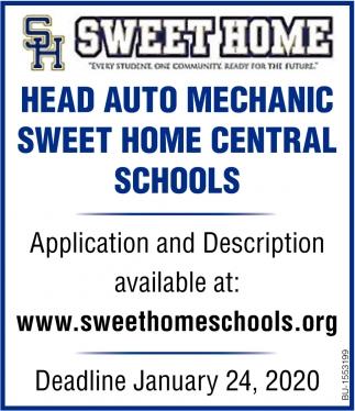 Head Auto Mechanic