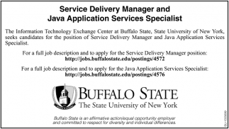 Service Delivery Manager and Java Application Services Specialist
