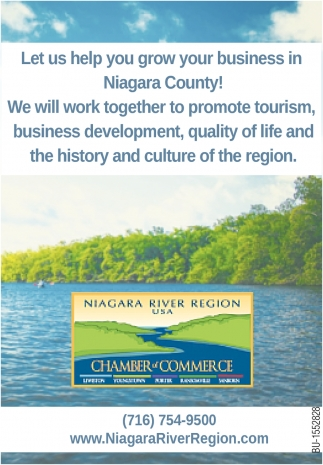 Let Us Help You Grow Your Business in Niagara County!